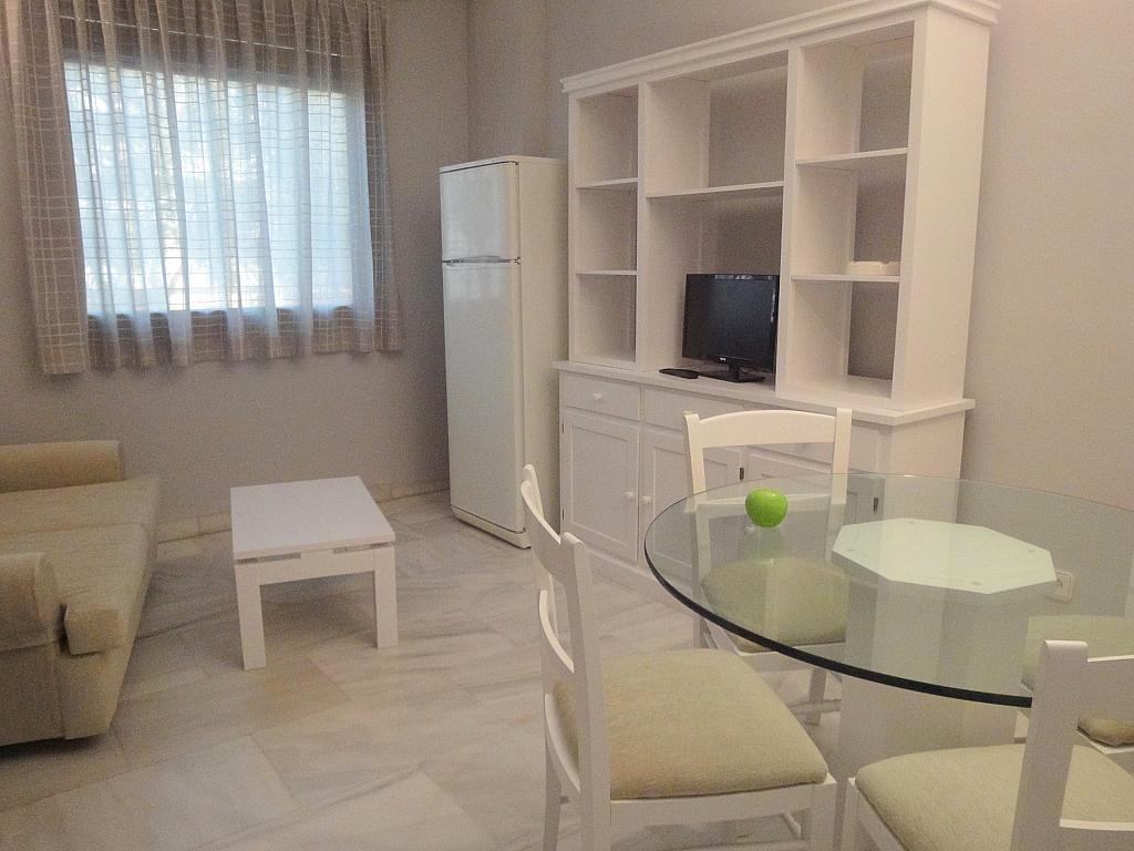 Salón - Apartamento en alquiler en calle Alcalde Luis Uruñuela, Entrepuentes en Sevilla - 127135250