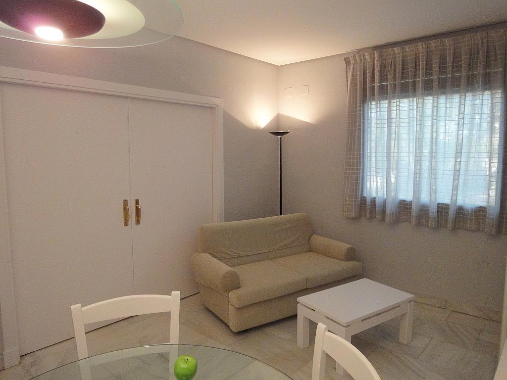 Salón - Apartamento en alquiler en calle Alcalde Luis Uruñuela, Entrepuentes en Sevilla - 127135256