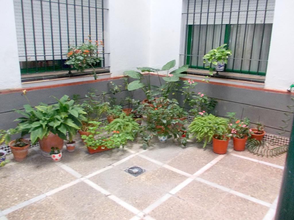 Piso en alquiler en calle Pages del Corro, Triana en Sevilla - 132075099