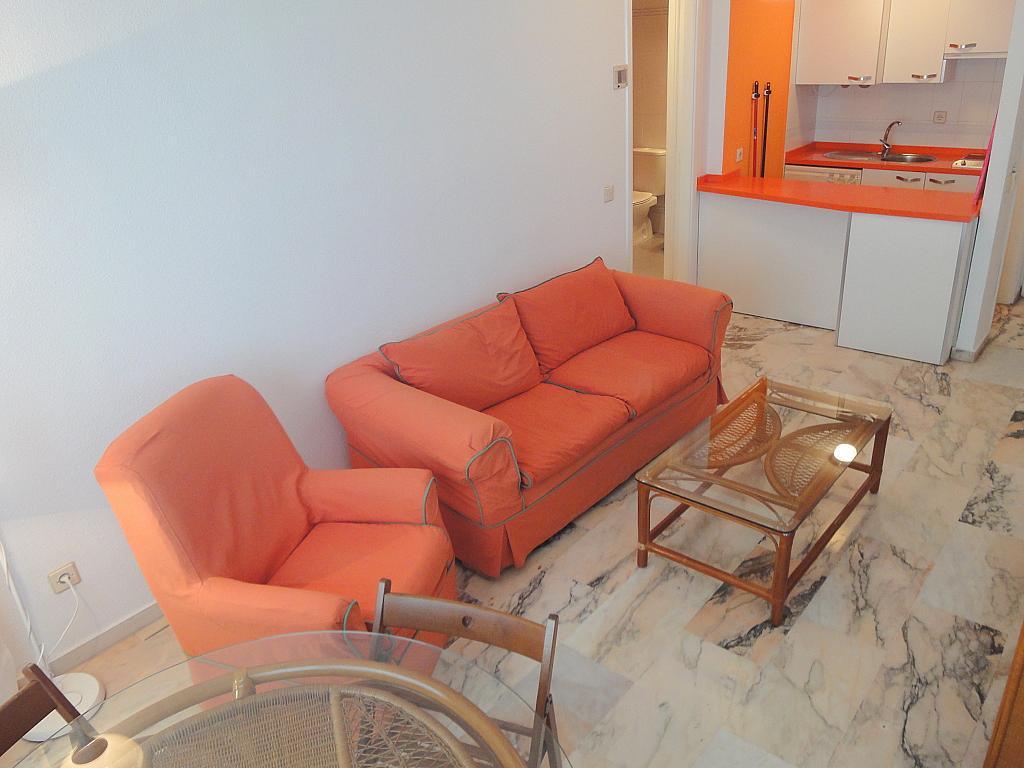 Apartamento en alquiler en calle Alcalde Luis Uruñuela, Entrepuentes en Sevilla - 133021106