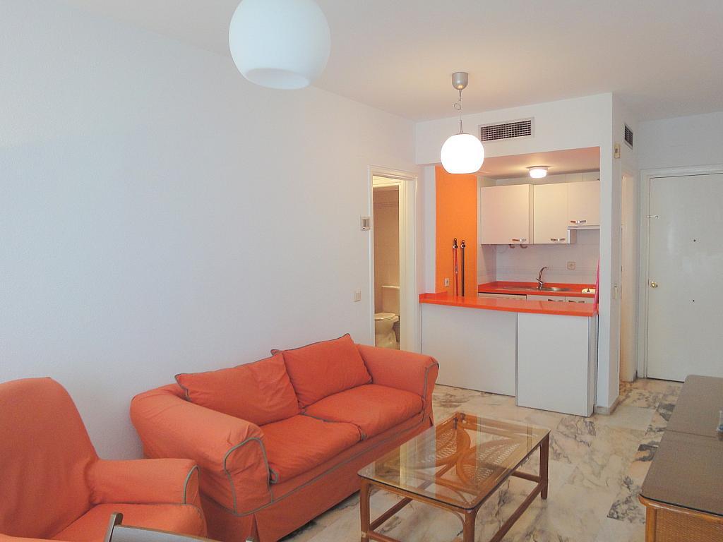 Apartamento en alquiler en calle Alcalde Luis Uruñuela, Entrepuentes en Sevilla - 133021133
