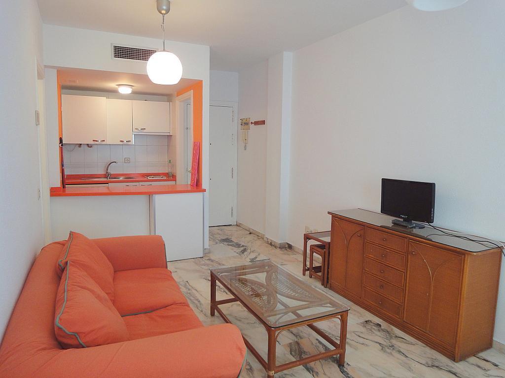Apartamento en alquiler en calle Alcalde Luis Uruñuela, Entrepuentes en Sevilla - 133021138