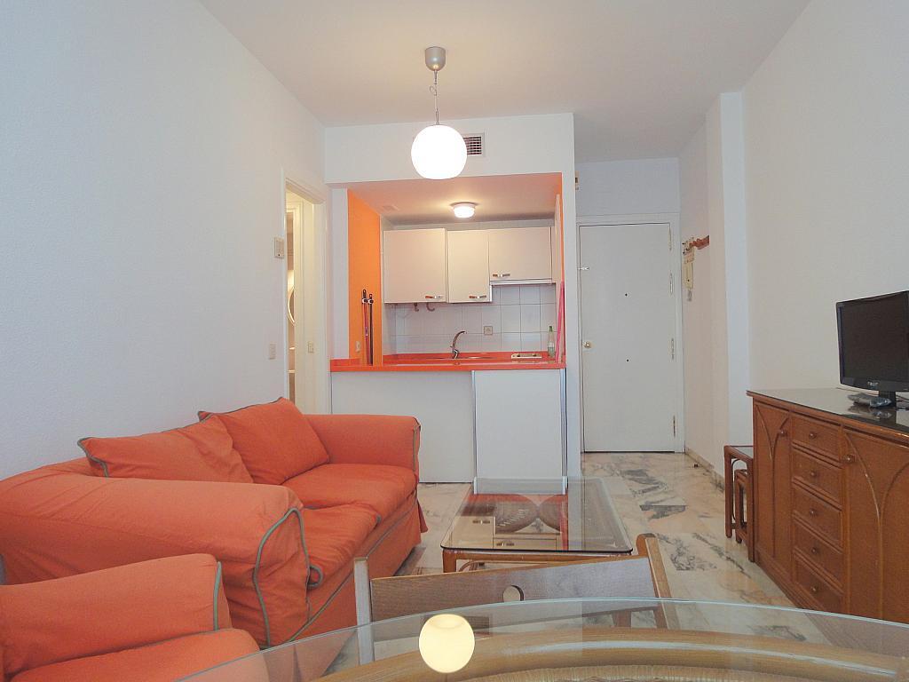 Apartamento en alquiler en calle Alcalde Luis Uruñuela, Entrepuentes en Sevilla - 133021160