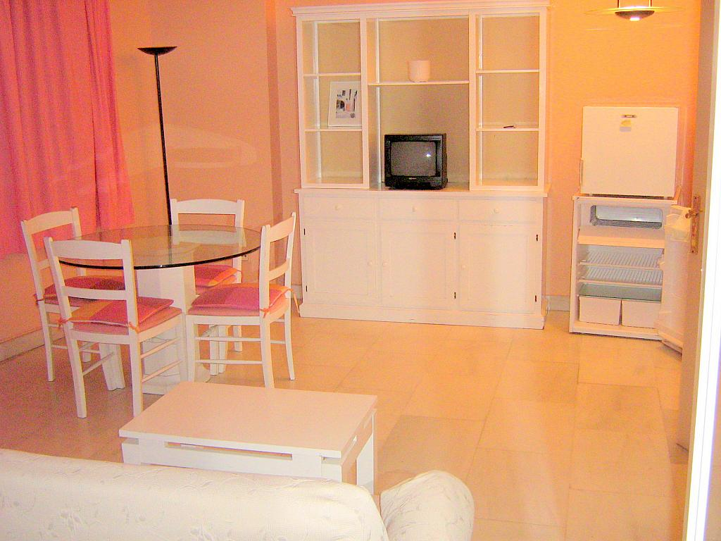 Salón - Apartamento en alquiler en calle Avd de Las Ciencias, Av. Ciencias-Emilio Lemos en Sevilla - 135099512