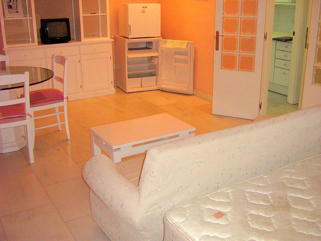 Salón - Apartamento en alquiler en calle Avd de Las Ciencias, Av. Ciencias-Emilio Lemos en Sevilla - 135099657