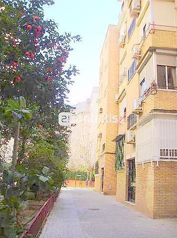 Fachada - Piso en alquiler en calle Samaniego, Nervión en Sevilla - 136678755