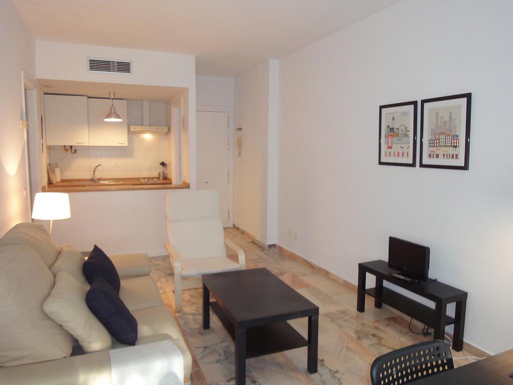 Piso en alquiler en calle Alcalde Luis Uruñuela, Este - Alcosa - Torreblanca en Sevilla - 139534716