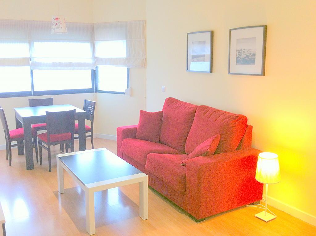 Apartamento en alquiler en calle Alcalde Luis de Uruñuelas, Av. Ciencias-Emilio Lemos en Sevilla - 143724074