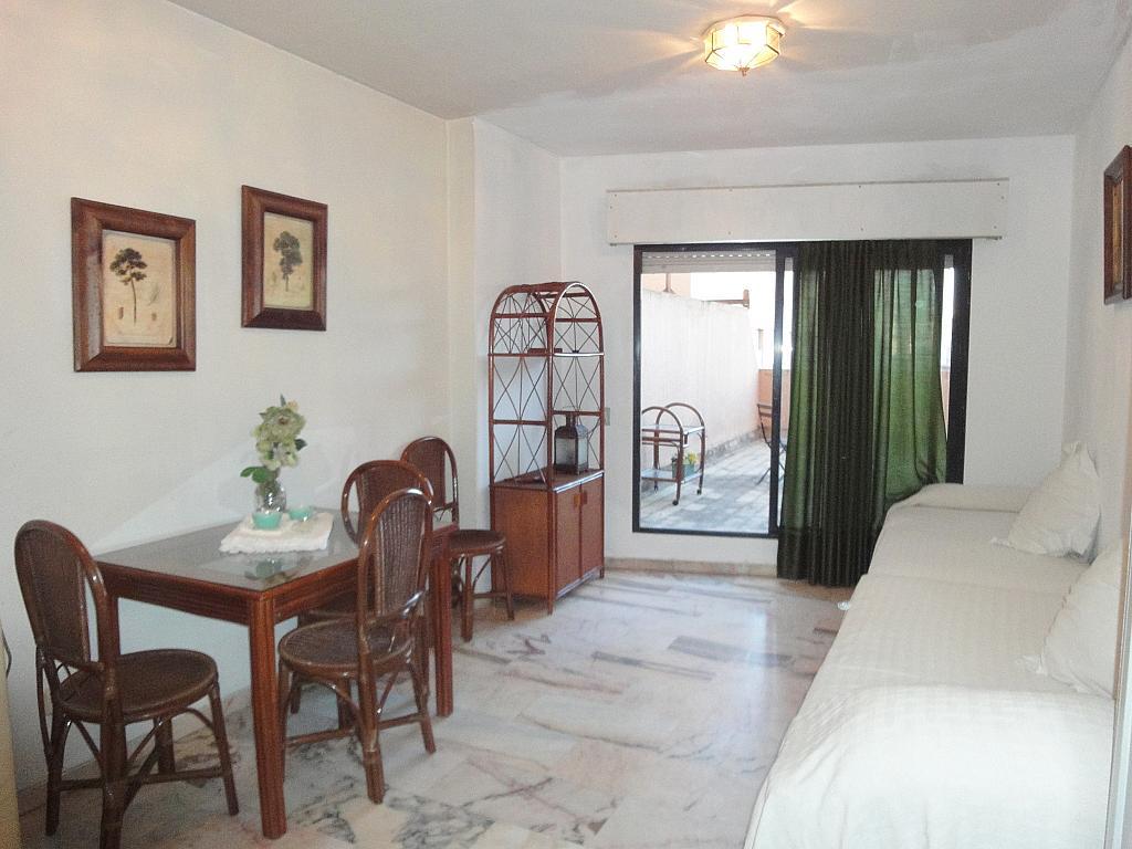 Salón - Estudio en alquiler en calle Alcalde Luis Uruñuelas, Av. Ciencias-Emilio Lemos en Sevilla - 143729038