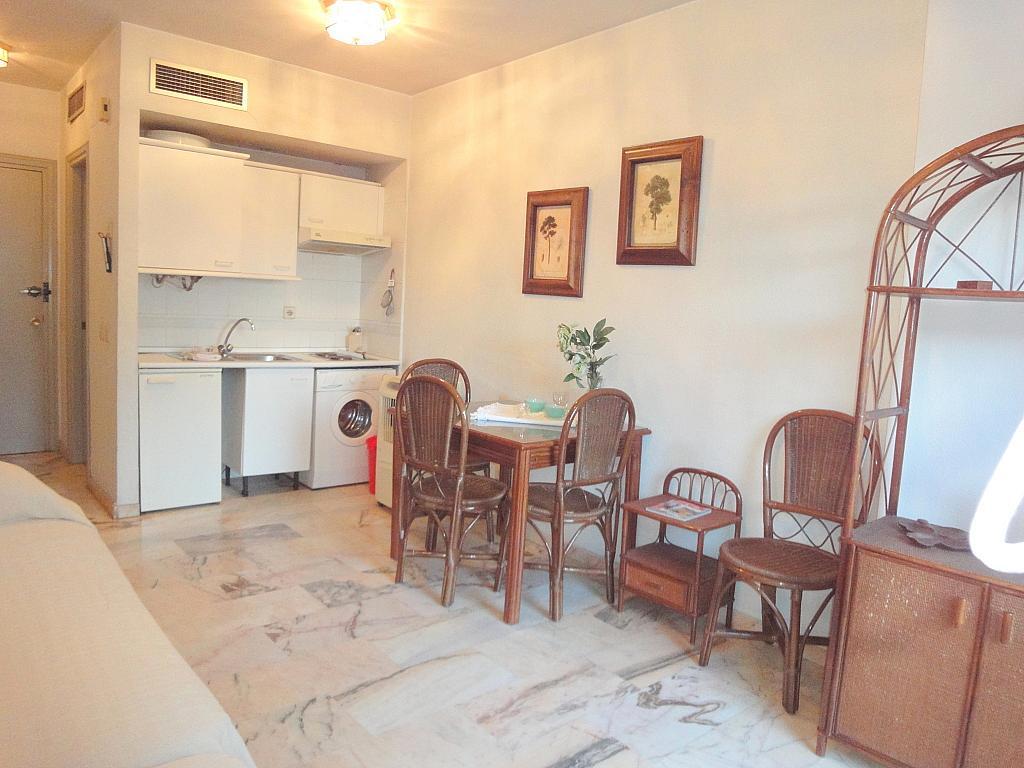 Cocina - Estudio en alquiler en calle Alcalde Luis Uruñuelas, Av. Ciencias-Emilio Lemos en Sevilla - 143729148