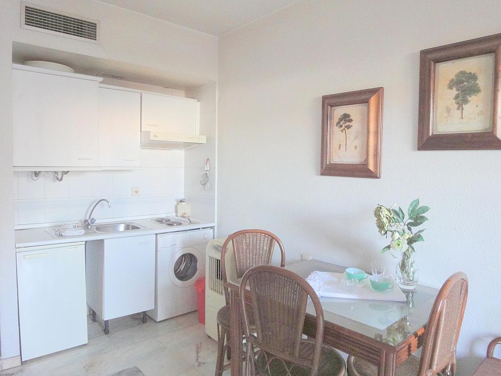 Cocina - Estudio en alquiler en calle Alcalde Luis Uruñuelas, Av. Ciencias-Emilio Lemos en Sevilla - 143729209