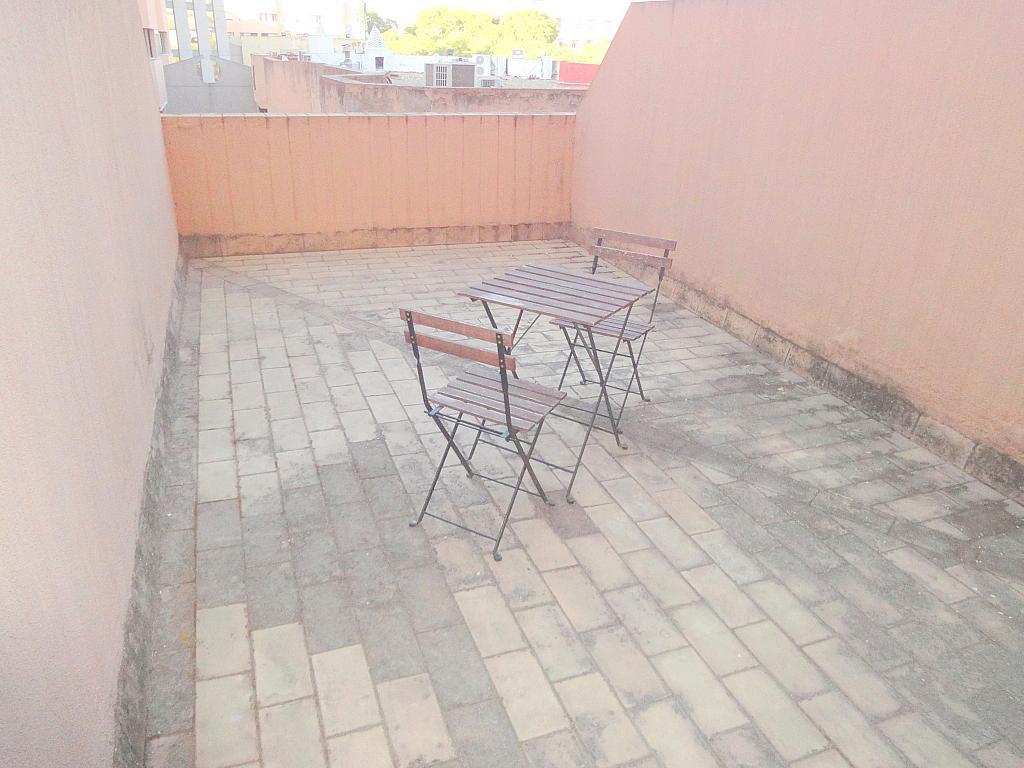 Terraza - Estudio en alquiler en calle Alcalde Luis Uruñuelas, Av. Ciencias-Emilio Lemos en Sevilla - 143729222