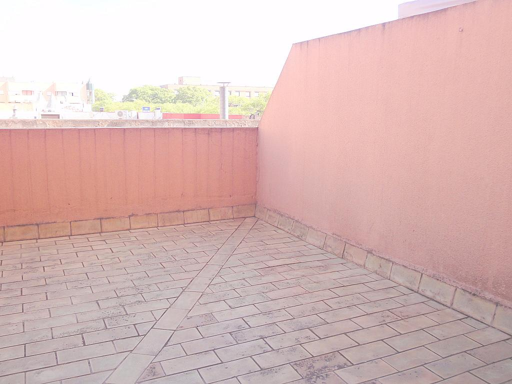 Terraza - Estudio en alquiler en calle Alcalde Luis Uruñuela, Av. Ciencias-Emilio Lemos en Sevilla - 144561199