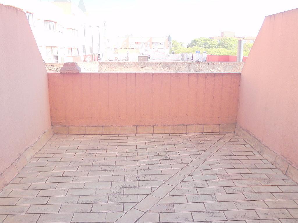 Terraza - Estudio en alquiler en calle Alcalde Luis Uruñuela, Av. Ciencias-Emilio Lemos en Sevilla - 144561224