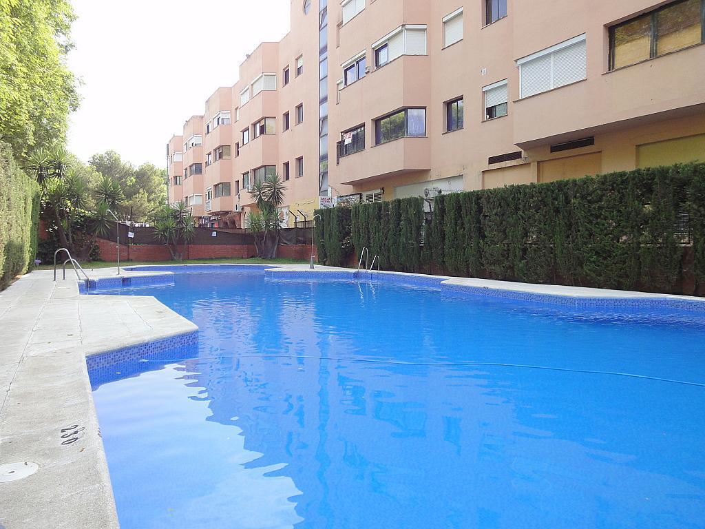 Piscina - Piso en alquiler en calle Alcalde Luis de Uruñuelas, Entrepuentes en Sevilla - 145185864