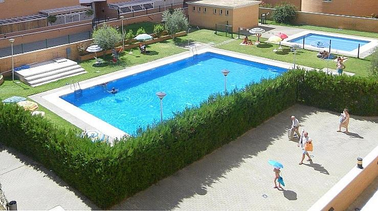 Piscina - Piso en alquiler en calle Alamo Blanco, Este - Alcosa - Torreblanca en Sevilla - 145649806