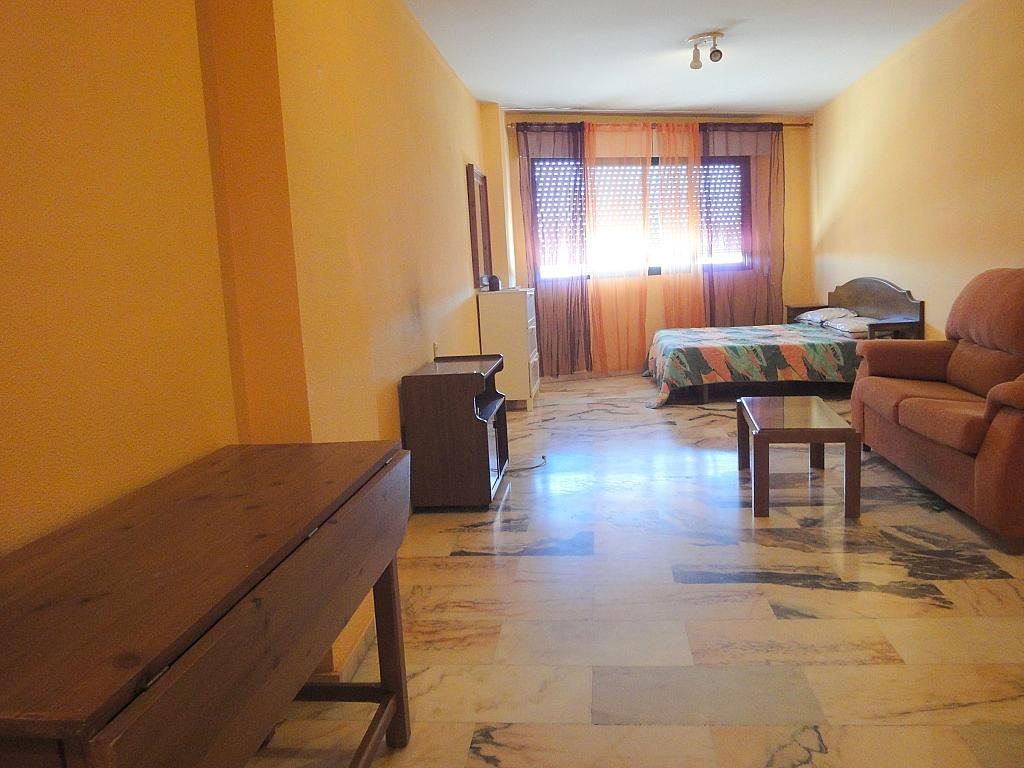 Pasillo - Estudio en alquiler en calle Avd Alcalde Luis de Uruñuela, Av. Ciencias-Emilio Lemos en Sevilla - 146409661
