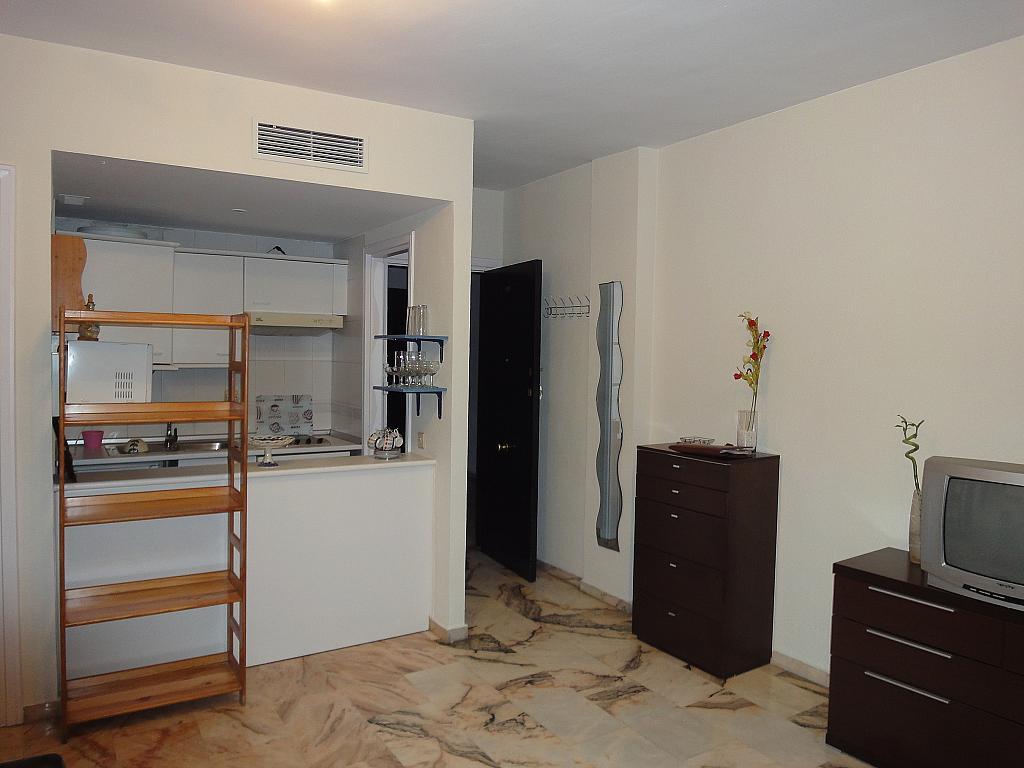 Cocina - Estudio en alquiler en calle Avd Alcalde Luis de Uruñuelas, Av. Ciencias-Emilio Lemos en Sevilla - 153930431