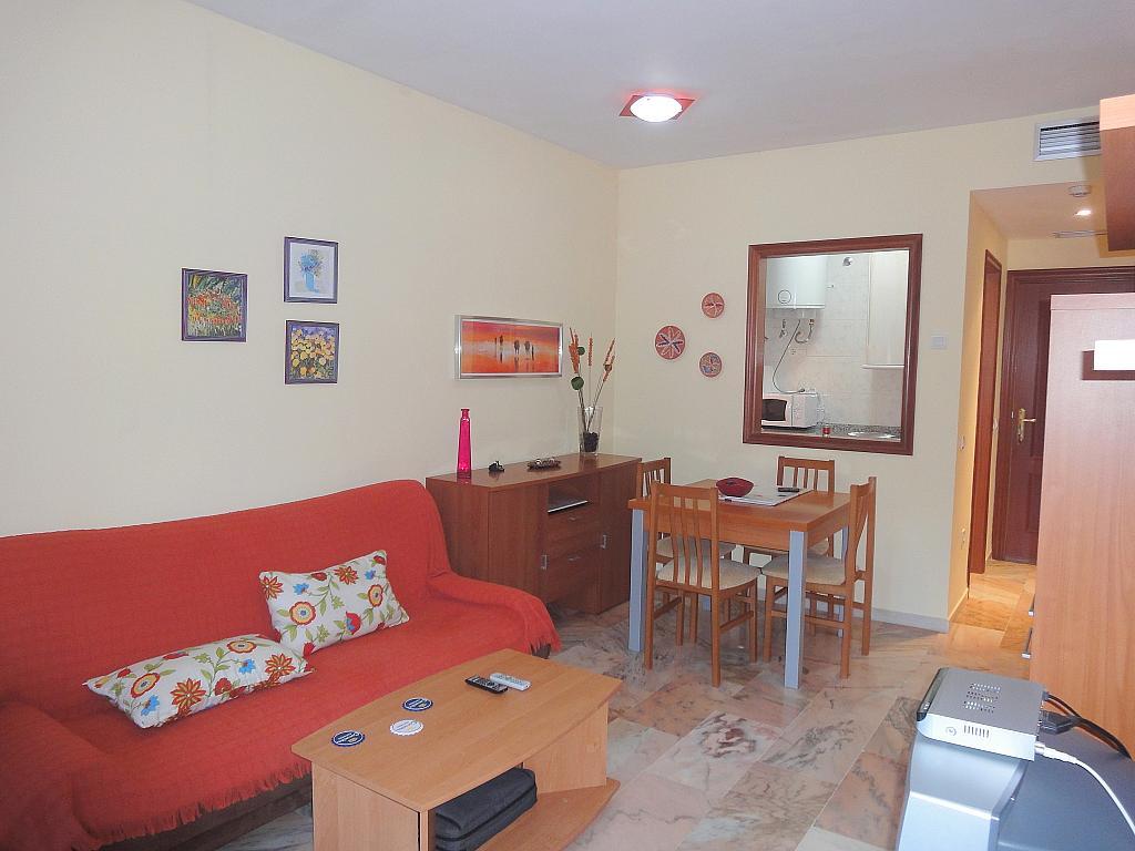 Salón - Apartamento en alquiler en calle Alcalde Luis de Uruñuelas, Av. Ciencias-Emilio Lemos en Sevilla - 153950347