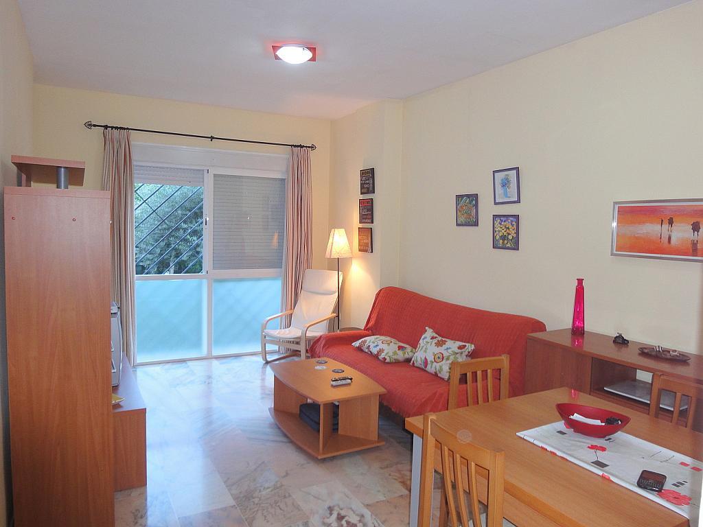 Salón - Apartamento en alquiler en calle Alcalde Luis de Uruñuelas, Av. Ciencias-Emilio Lemos en Sevilla - 153950374