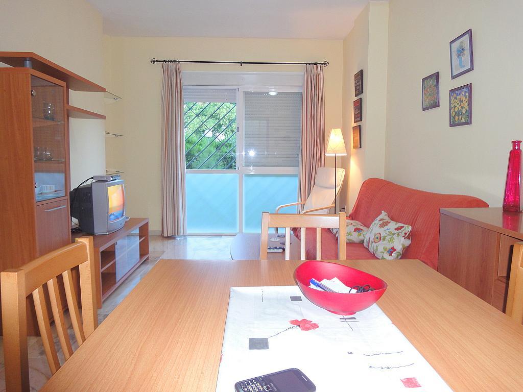 Salón - Apartamento en alquiler en calle Alcalde Luis de Uruñuelas, Av. Ciencias-Emilio Lemos en Sevilla - 153950435