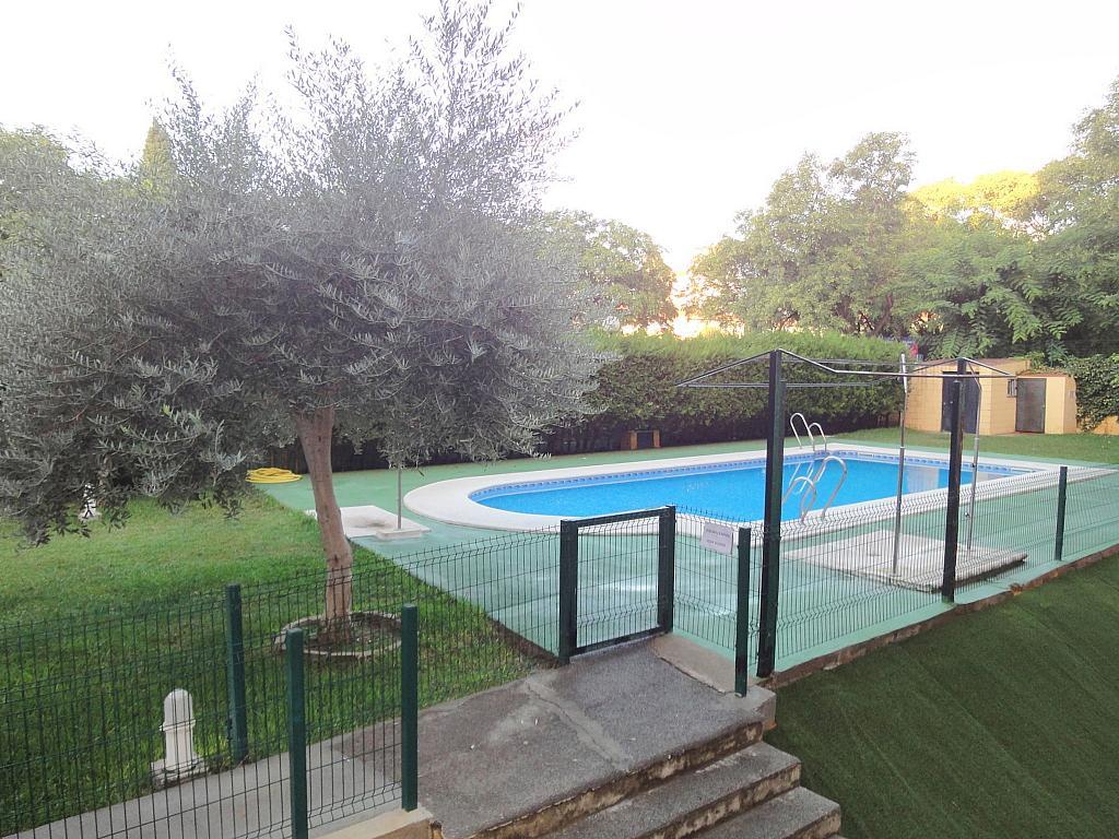 Piscina - Apartamento en alquiler en calle Alcalde Luis de Uruñuelas, Av. Ciencias-Emilio Lemos en Sevilla - 153950483