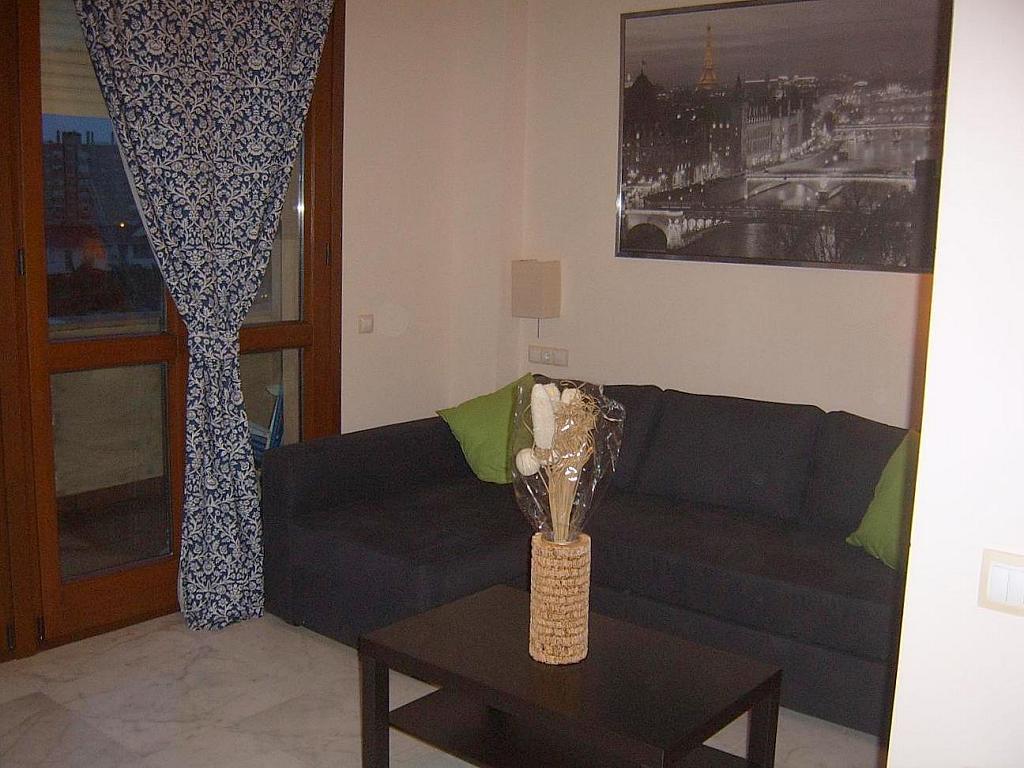 Salón - Estudio en alquiler en calle Alcalde Luis de Uruñuela, Entrepuentes en Sevilla - 155695601