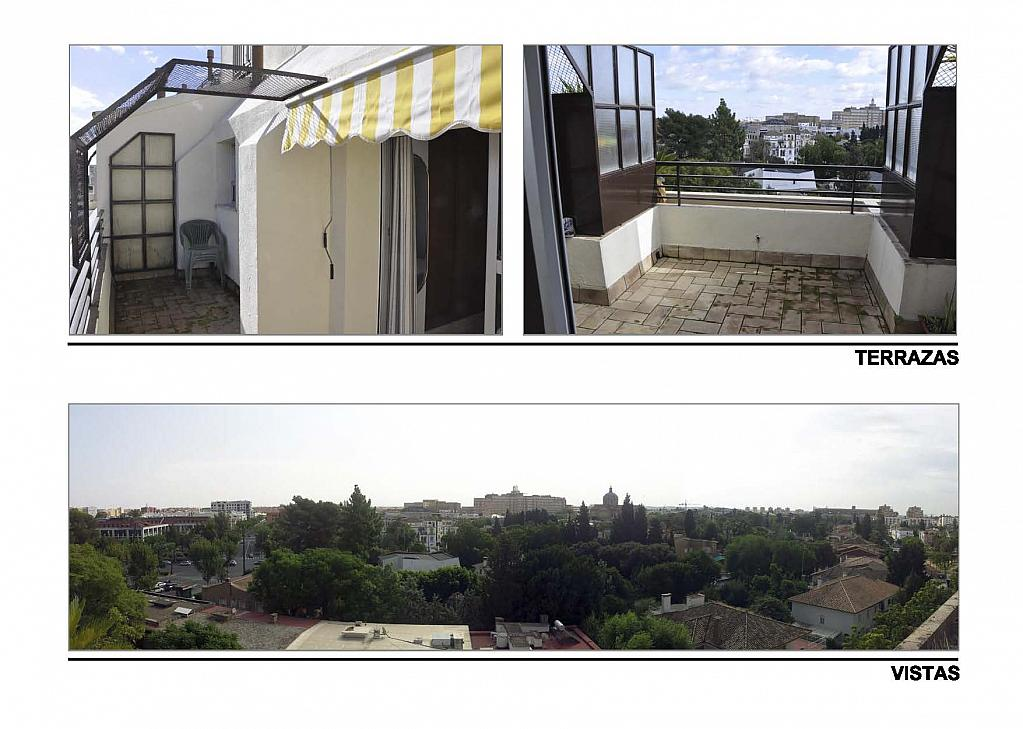 Terraza - Ático-dúplex en alquiler en calle Reina Mercedes, Reina Mercedes en Sevilla - 156507737