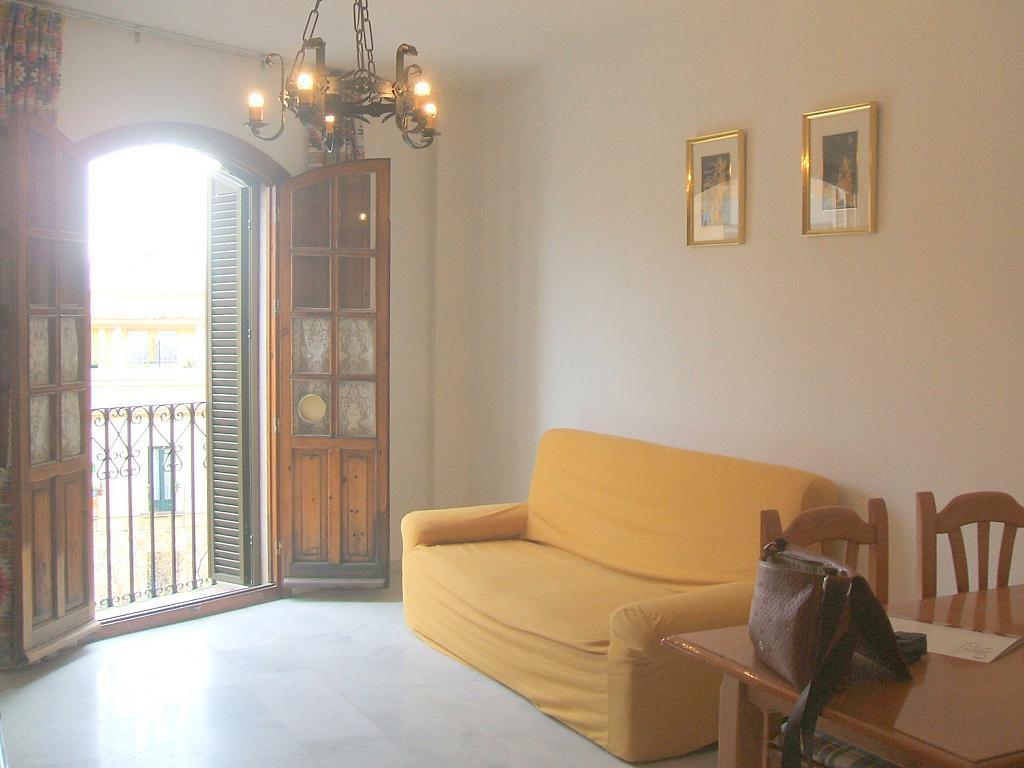 Salón - Piso en alquiler en calle Castilla, Triana en Sevilla - 158478038