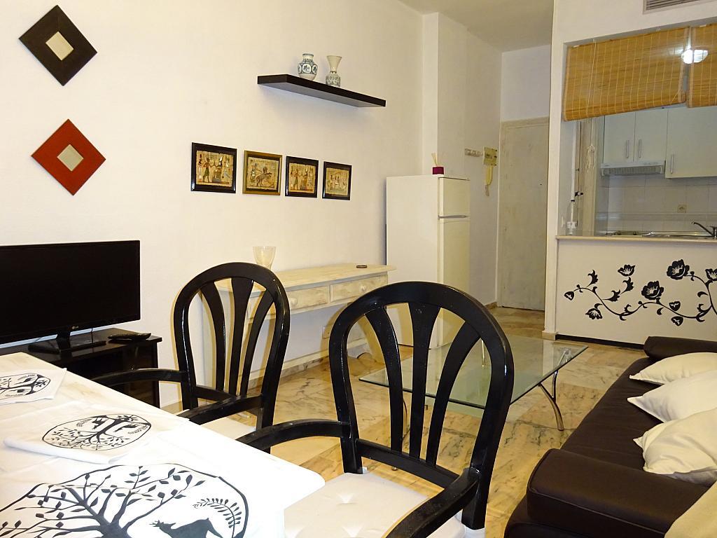 Salón - Apartamento en alquiler en calle Alcalde Luis de Uruñuelas, Av. Ciencias-Emilio Lemos en Sevilla - 159386789