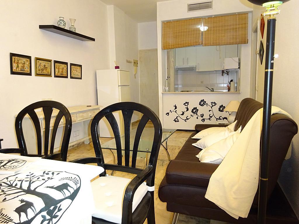 Salón - Apartamento en alquiler en calle Alcalde Luis de Uruñuelas, Av. Ciencias-Emilio Lemos en Sevilla - 159386796