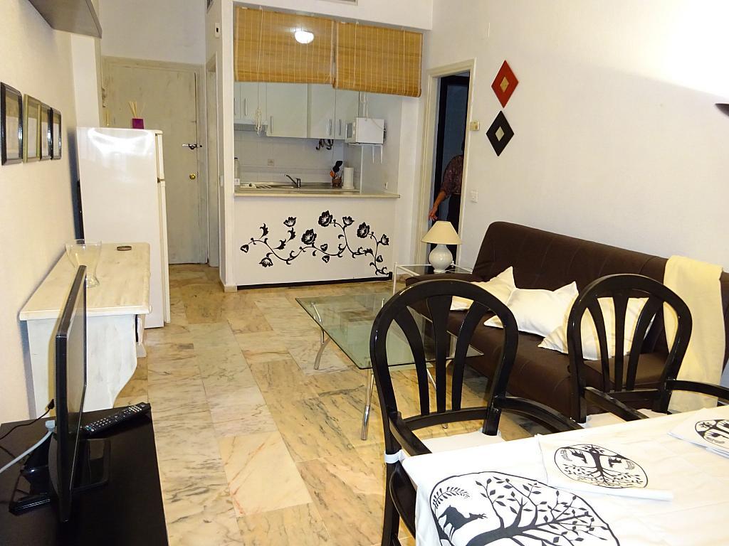 Salón - Apartamento en alquiler en calle Alcalde Luis de Uruñuelas, Av. Ciencias-Emilio Lemos en Sevilla - 159387737