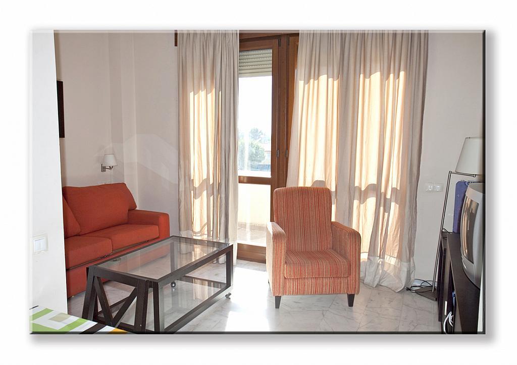 Salón - Estudio en alquiler en calle Alcalde Luis Uruñuela, Este - Alcosa - Torreblanca en Sevilla - 162787387