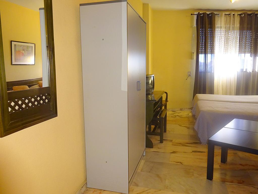 Pasillo - Estudio en alquiler en calle Alcalde Luis Uruñuela, Entrepuentes en Sevilla - 165830143