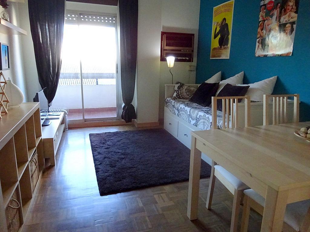 Salón - Estudio en alquiler en calle Salado, Triana en Sevilla - 168025747