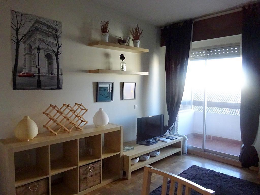 Salón - Estudio en alquiler en calle Salado, Triana en Sevilla - 168025915