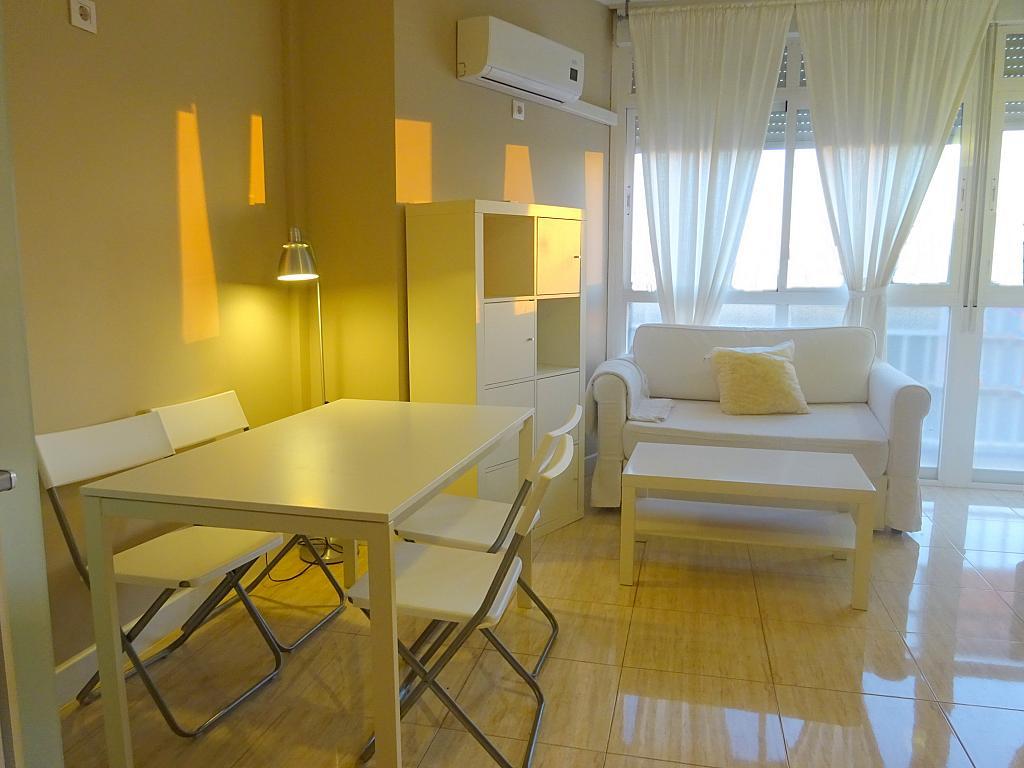 Salón - Estudio en alquiler en calle Asuncion, Los Remedios en Sevilla - 169794206