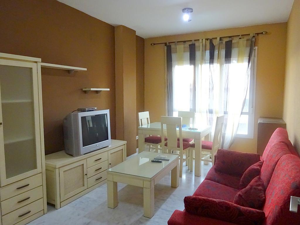 Salón - Apartamento en alquiler en calle Ciencias, Av. Ciencias-Emilio Lemos en Sevilla - 170869676
