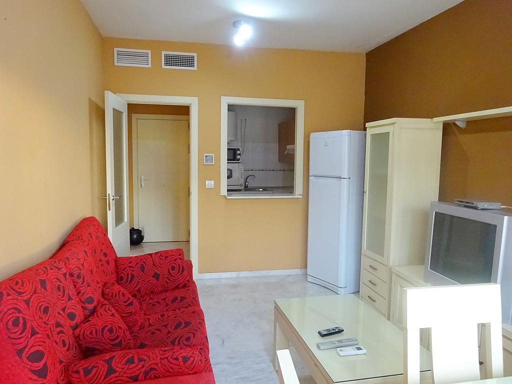 Salón - Apartamento en alquiler en calle Ciencias, Av. Ciencias-Emilio Lemos en Sevilla - 170870274