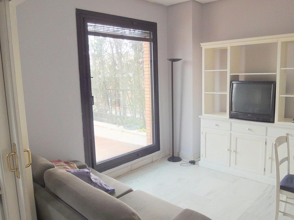 Salón - Apartamento en alquiler en calle Alcalde Ouis de Uruñuelas, Av. Ciencias-Emilio Lemos en Sevilla - 171212982