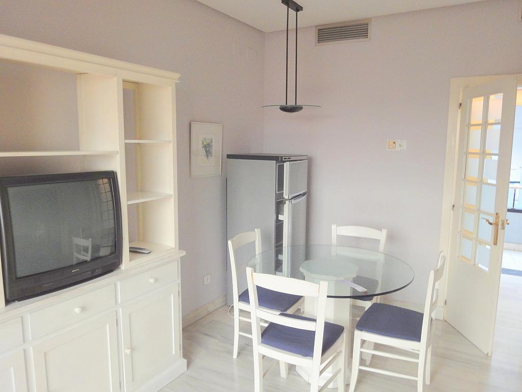 Comedor - Apartamento en alquiler en calle Alcalde Ouis de Uruñuelas, Av. Ciencias-Emilio Lemos en Sevilla - 171212999