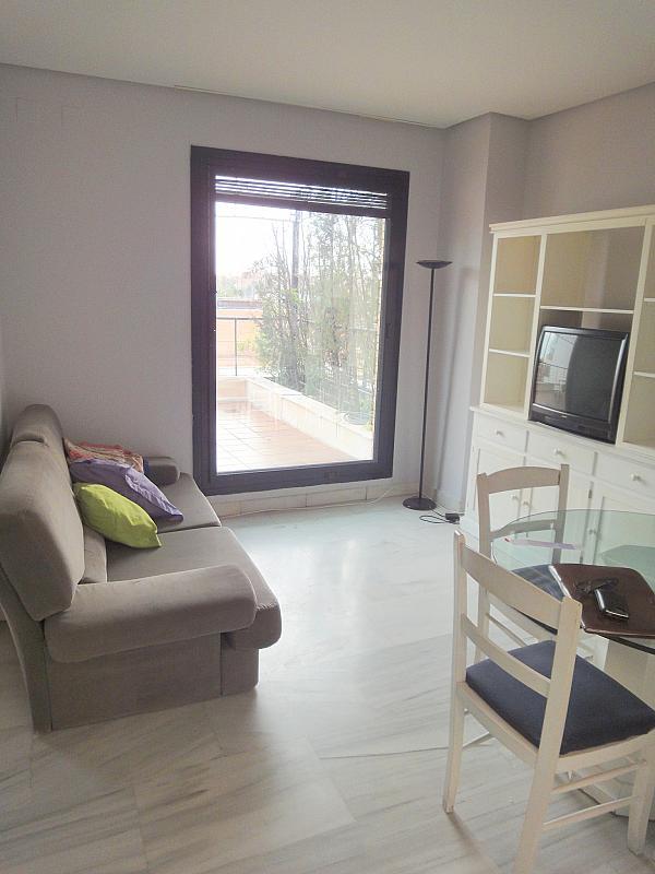 Salón - Apartamento en alquiler en calle Alcalde Ouis de Uruñuelas, Av. Ciencias-Emilio Lemos en Sevilla - 171213070