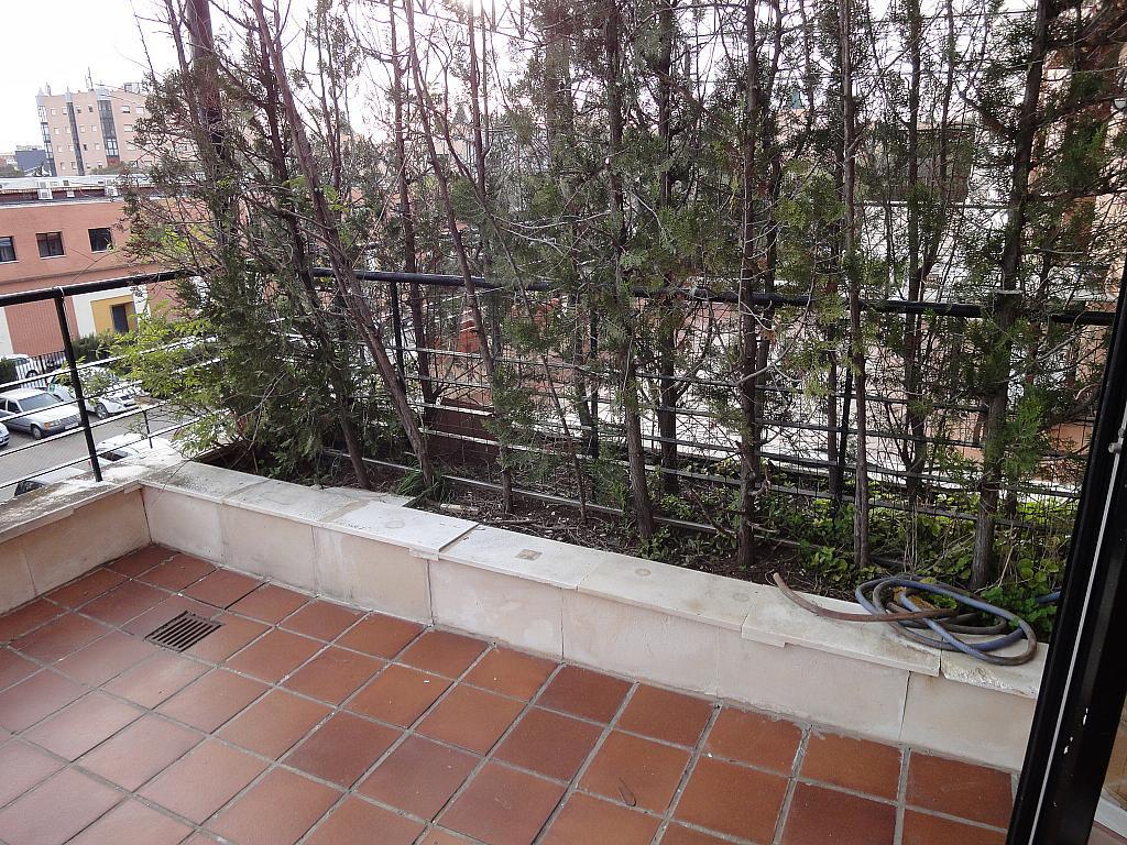 Terraza - Apartamento en alquiler en calle Alcalde Ouis de Uruñuelas, Av. Ciencias-Emilio Lemos en Sevilla - 171213118
