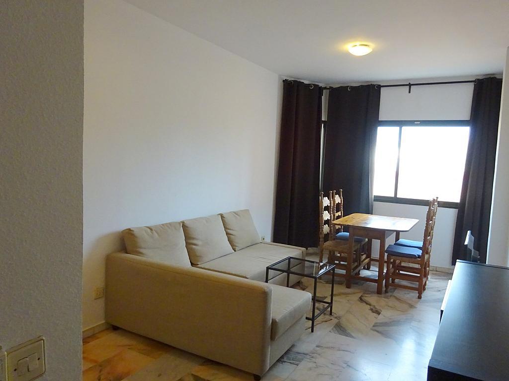 Salón - Apartamento en alquiler en calle Luis Uruñuela, Este - Alcosa - Torreblanca en Sevilla - 182616957
