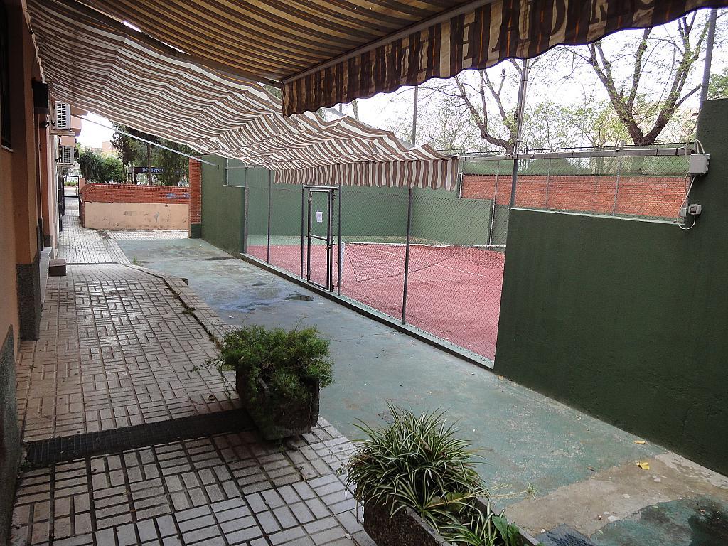 Zonas comunes - Estudio en alquiler en calle Alcalde Luis Uruñuela, Este - Alcosa - Torreblanca en Sevilla - 185094961