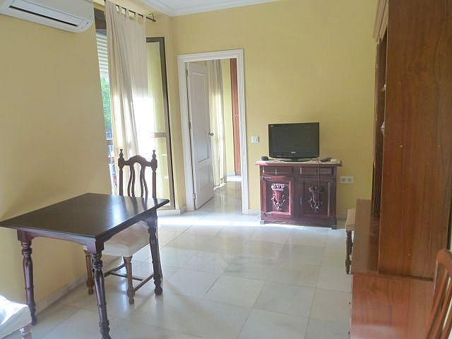 Salón - Apartamento en alquiler en plaza Carmen Benitez, La Florida en Sevilla - 192505881
