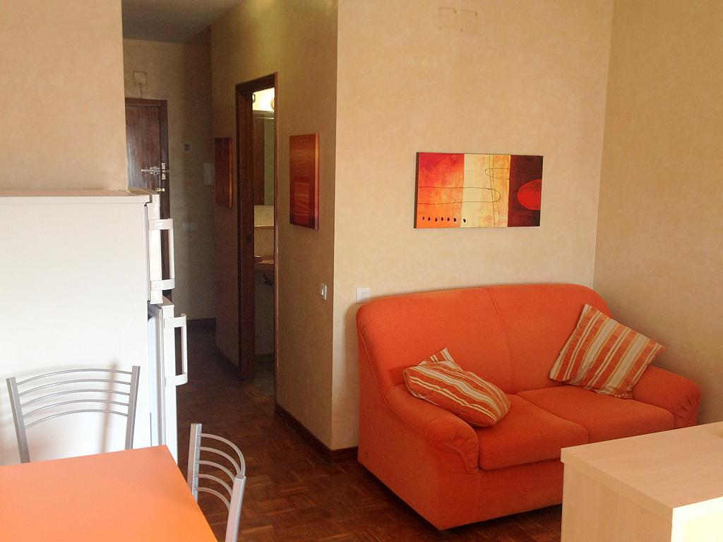 Salón - Estudio en alquiler en calle Salado, Triana en Sevilla - 194831239