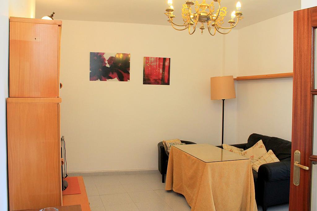Salón - Piso en alquiler en calle Pureza, Triana Casco Antiguo en Sevilla - 205492431