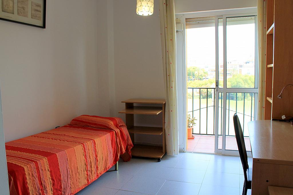 Dormitorio - Piso en alquiler en calle Pureza, Triana Casco Antiguo en Sevilla - 205492852