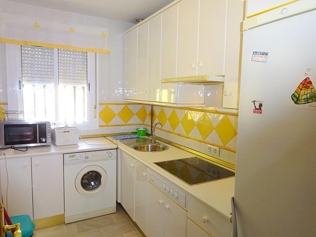 Cocina - Piso en alquiler en calle San Bernardo, San Bernardo en Sevilla - 206667291